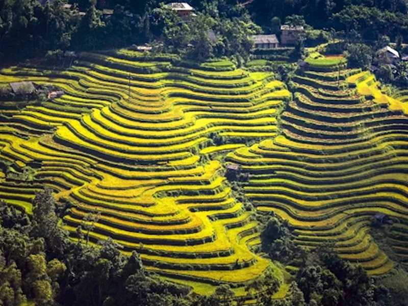 ​Ha Giang Group Tours 3 Days 2 Nights (Departure on Friday Only)