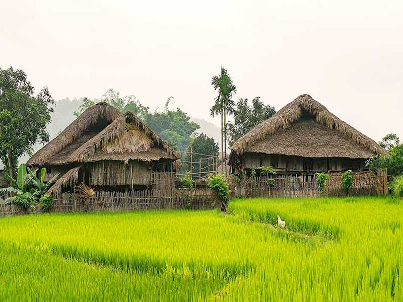 Truly Ha Giang Tours 3 Days 2 Nights (Private Tour)
